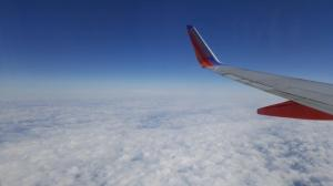 wing photo